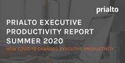 2020ExecutiveProductivityReportCover