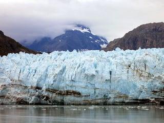 Climate Change Advocates in Public School Curriculum.jpg